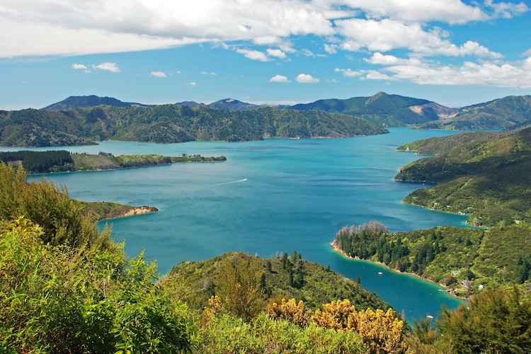 New Zealand Walking Journey