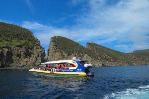 Bruny Island - Wilderness cruise searching for coastal wildlife - Luxury Private Air Tour Tasmania