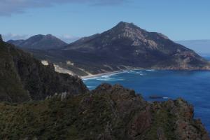 Stewart Island - a haven of wild beauty - Luxury solo tours