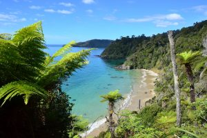 Stewart Island - stunning bays, inlets and golden sand beaches - Luxury short breaks New Zealand