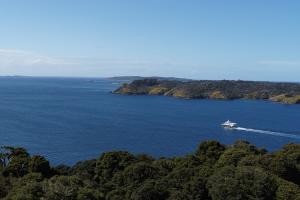 Stewart Island - Fiordland Jewel, luxury vessel - Luxury short breaks New Zealand