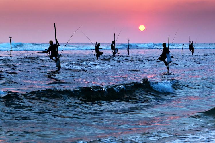 The Wonders of Sri Lanka