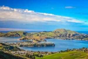 Dunedin - Central Otago - Solo Tours