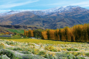Mt Difficulty - dramatic views of rugged mountain landscape - Luxury short breaks New Zealand