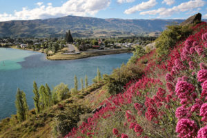 Cromwell - The Junction lookout - Luxury solo tours