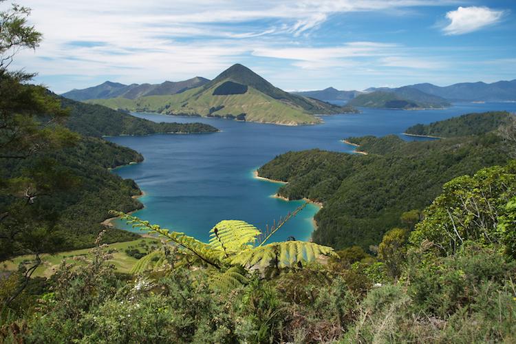 New Zealand Coastal Explorer