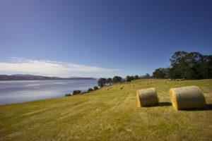 Huon River - rolling fields on the peninsula - Luxury short breaks Australia