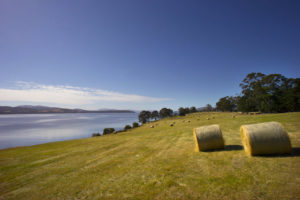 Cygnet - rolling hills and hay bales - Luxury Short Breaks Australia