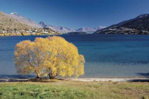 Lake Wakatipu - view of the Remarkables across the lake - Luxury solo tours