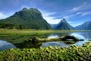 Milford Sound - Lakes & Fiords - Luxury New Zealand