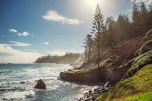 Norfolk Island - rugged coast line lined with pines - Luxury Short Break