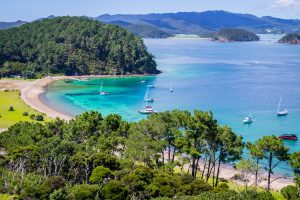 Northland - Bay of Islands tree lined beaches - Luxury solo tours