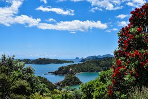 Bay of Islands - 144 islands on the East Coast of Far North District - Luxury solo tours