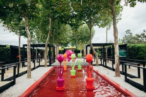 Matakana - sculpture-filled gardens, art galleries and vineyard - Luxury solo tours