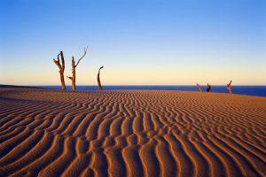Fraser Island - amazing sand beaches - Luxury solo tours