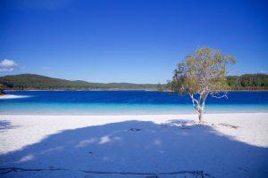 Fraser Island - awe-inspiring beauty of Lake McKenzie - Luxury solo tours
