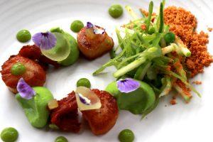 South Island - enjoy gourmet seafood - Luxury solo tours