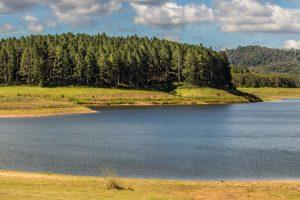 Tinaroo - Lake Barrine - Luxury short breaks Queensland