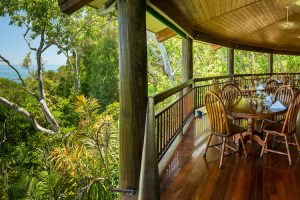 Thala Beach Nature Reserve - Osprey's restaurant overlooking the rainforest - Luxury solo tours