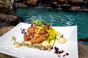 Thala Beach Nature Reserve - Pool side dining at Osprey's - Luxury short breaks Queensland