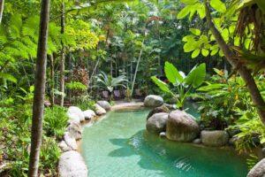 Silky Oaks Lodge - Swimming pool - Bill Peach Journeys