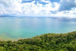 Daintree Rainforest - where rainforest meets the Coral Sea - Luxury solo tours