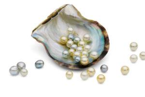 Broken Bay - natural pearls - luxury short breaks New South Wales