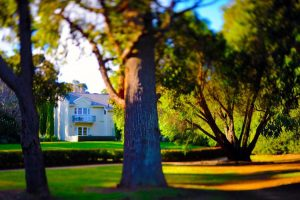 Margaret River - country house among the trees - Luxury short breaks Western Australia