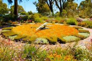 Perth - Flower clock in Kings Park - Luxury short breaks Western Australia